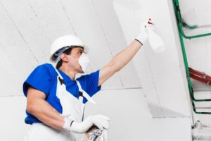 Mold and Your HVAC System